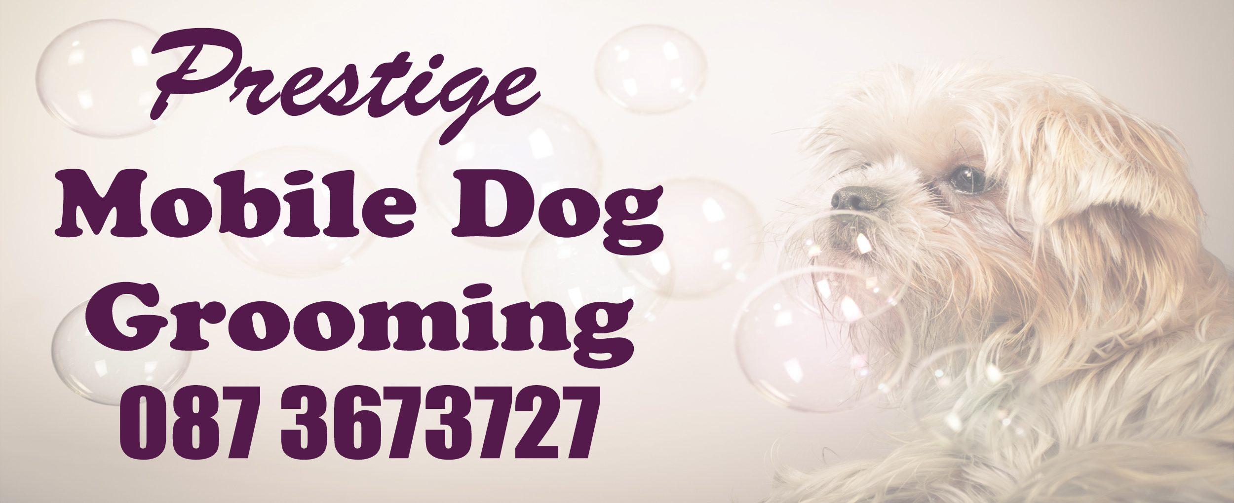 www.prestigemobiledoggrooming.ie